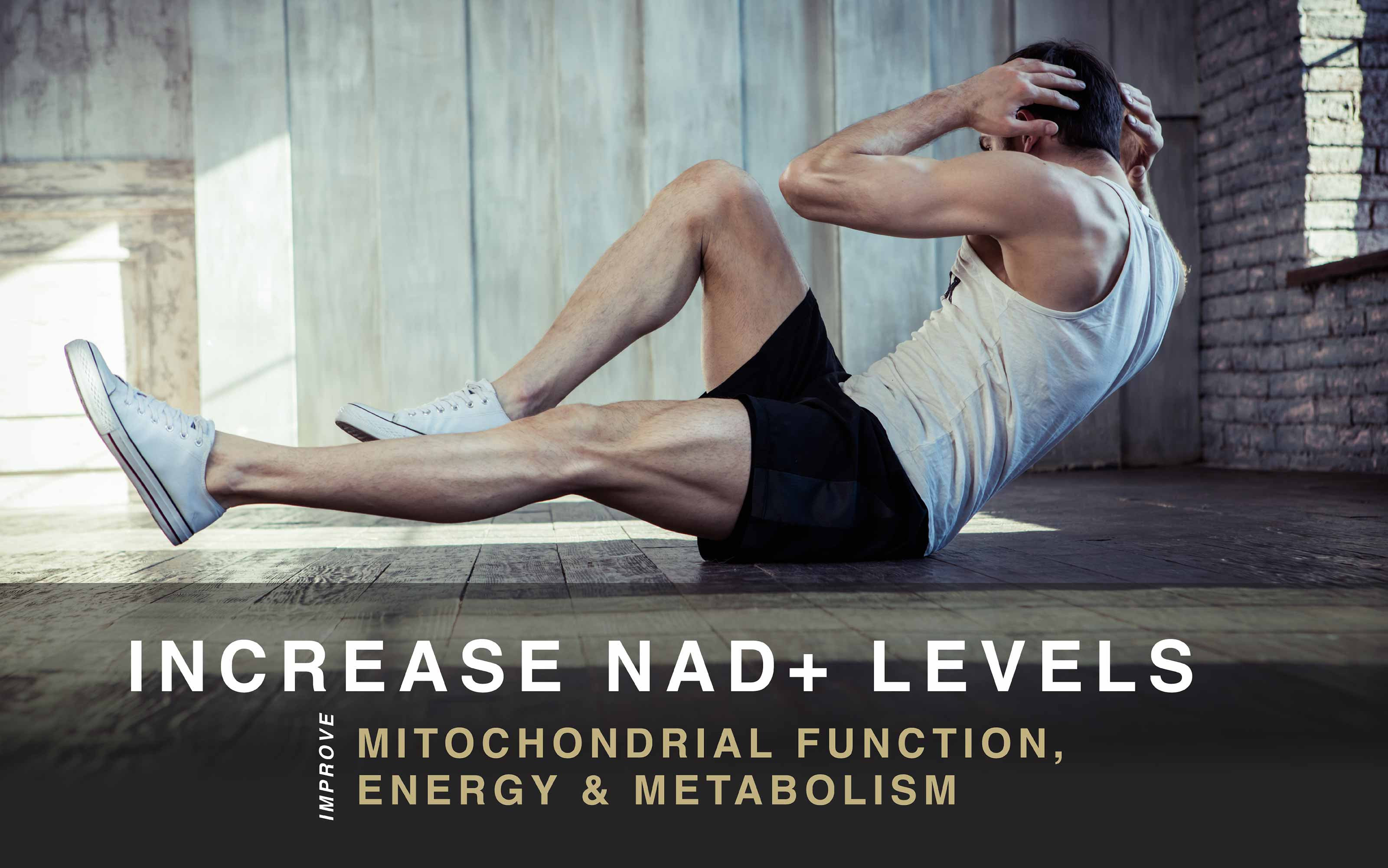 Increase NAD+ Levels and improve mitochondrial function, energy, and metabolism.