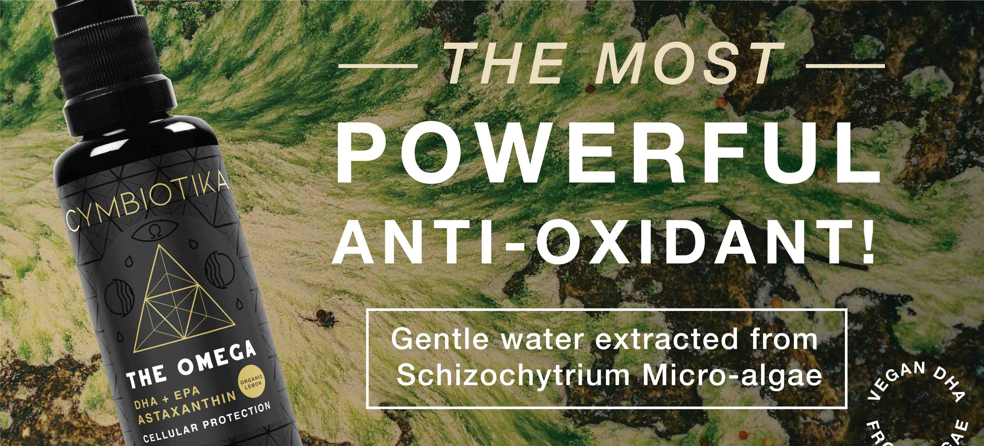 The most powerful antioxidant with gentle water extracted from Schizochytrium Micro-algae.