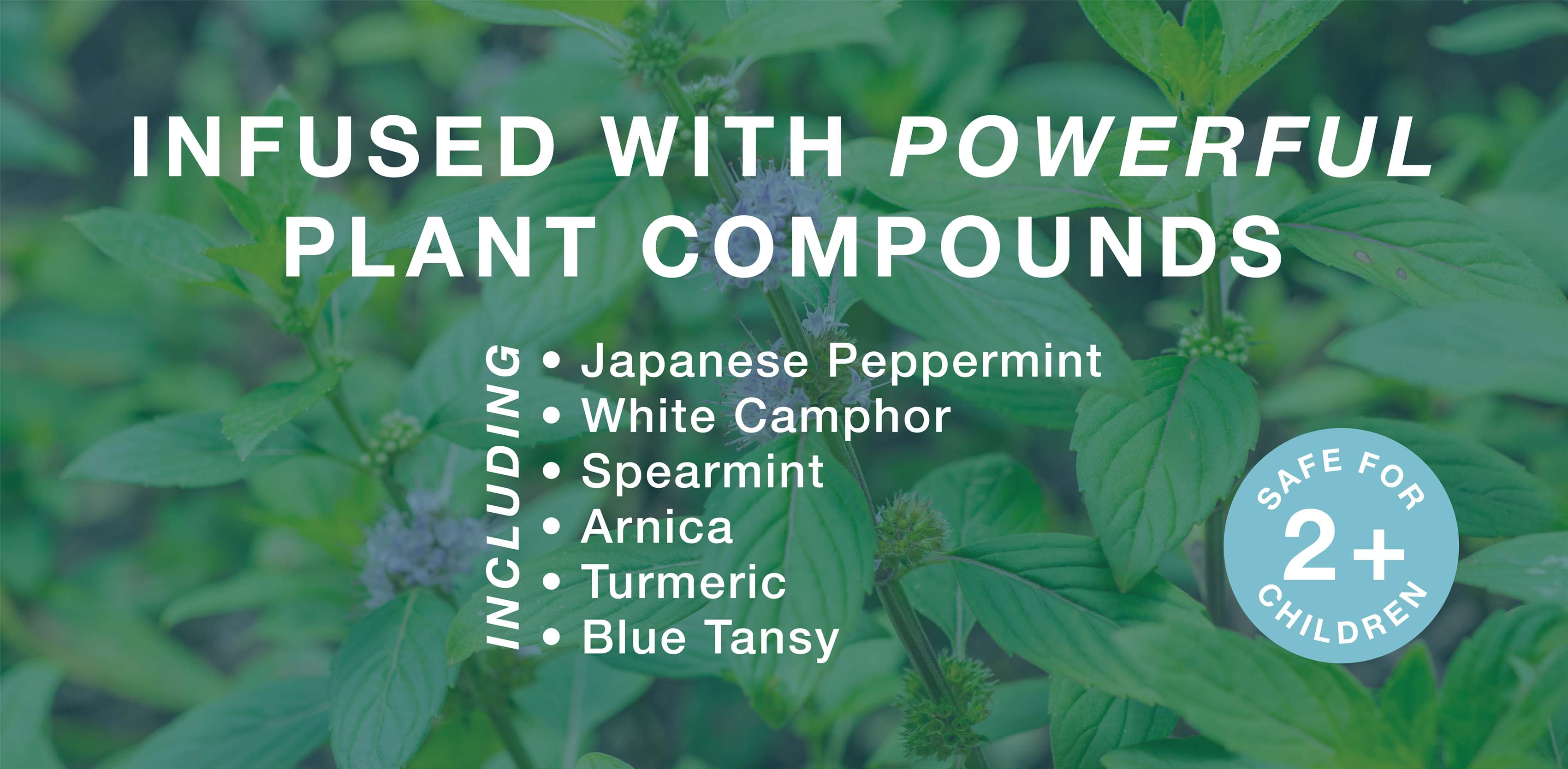 In fused with powerful plant compounds including Japanese peppermint, white camphor and spearmint.