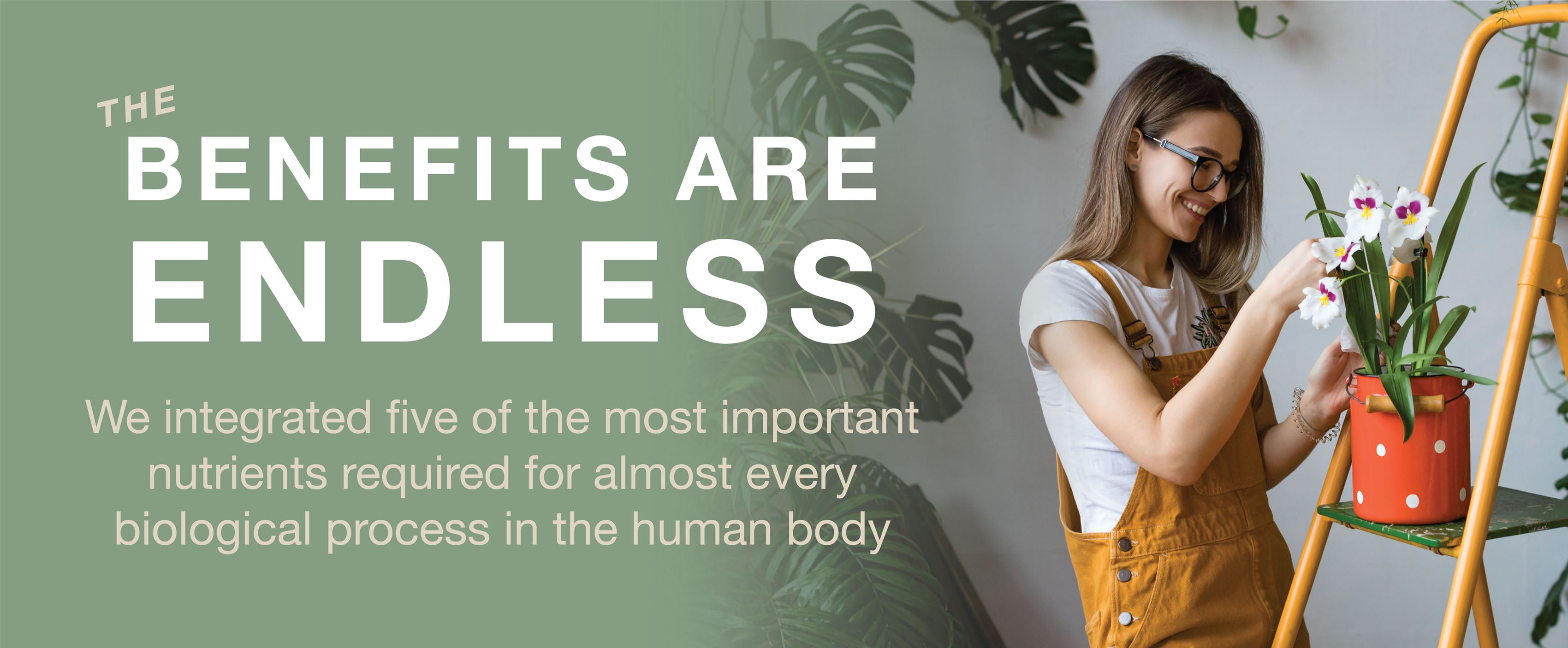 We integrated five of the most important nutrients required for almost every biological process in the human body.