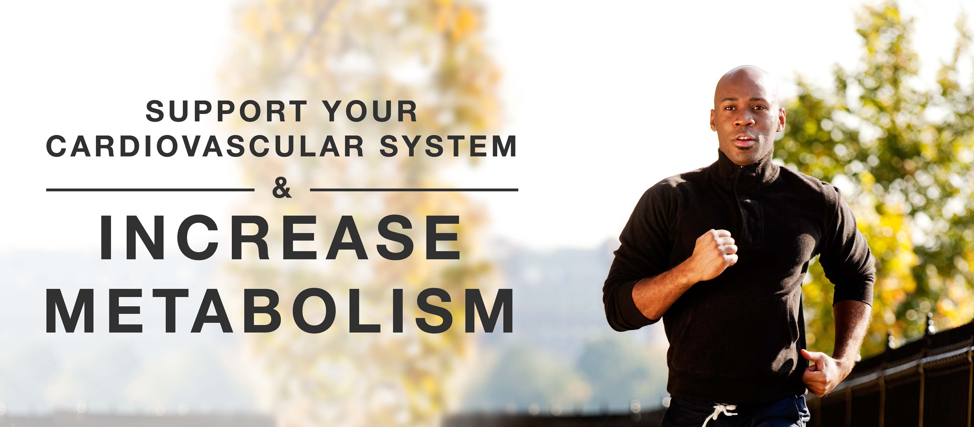 Support your cardiovascular system and increase metabolism.