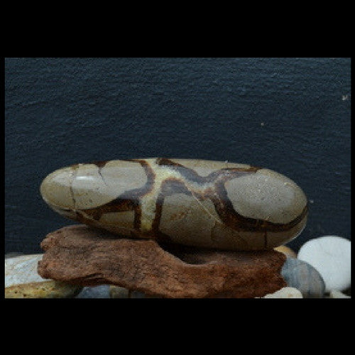 Septarian Dragonstone Large Polished Massage Wand - Illiom Crystals