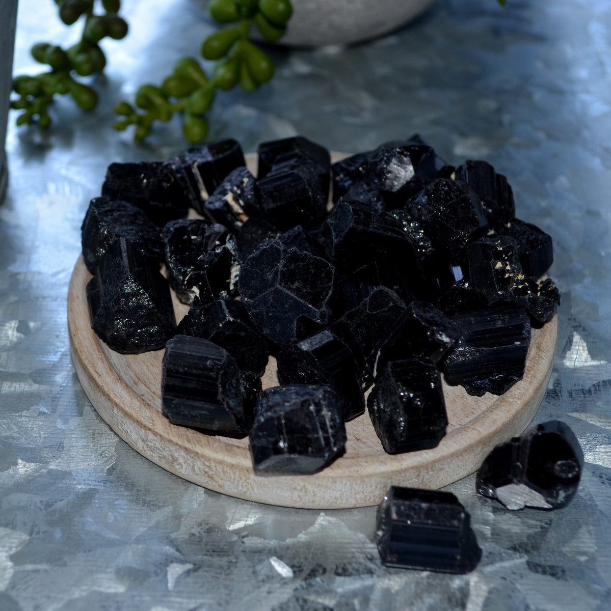 Black Tourmaline Natural Crystals at Illiom Crystals - Afterpay Available
