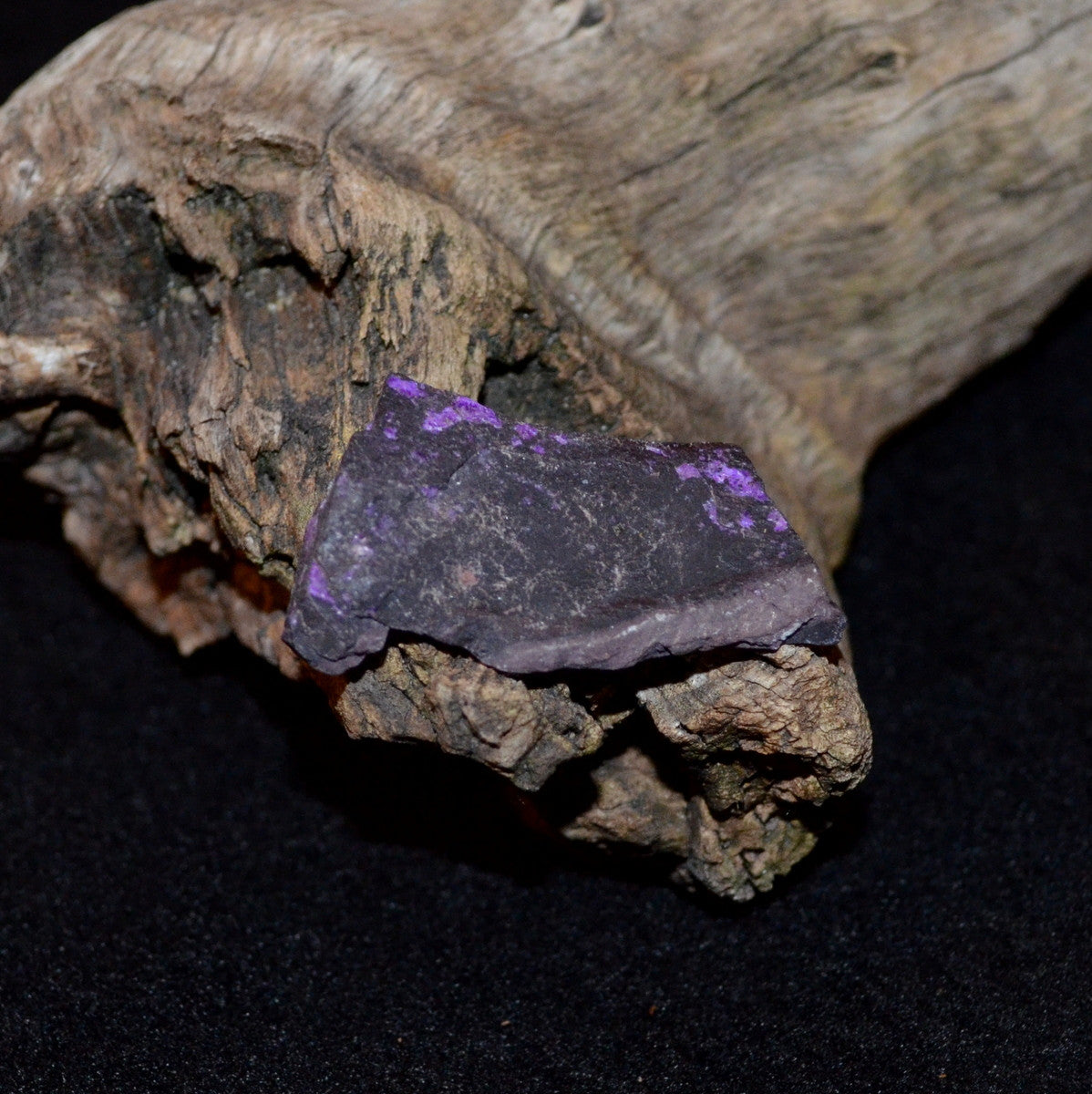 Sugilite Natural Specimen - Devine healing Universal Love - Shop Sugilite Now at Illiom Crystals - Now with Afterpay