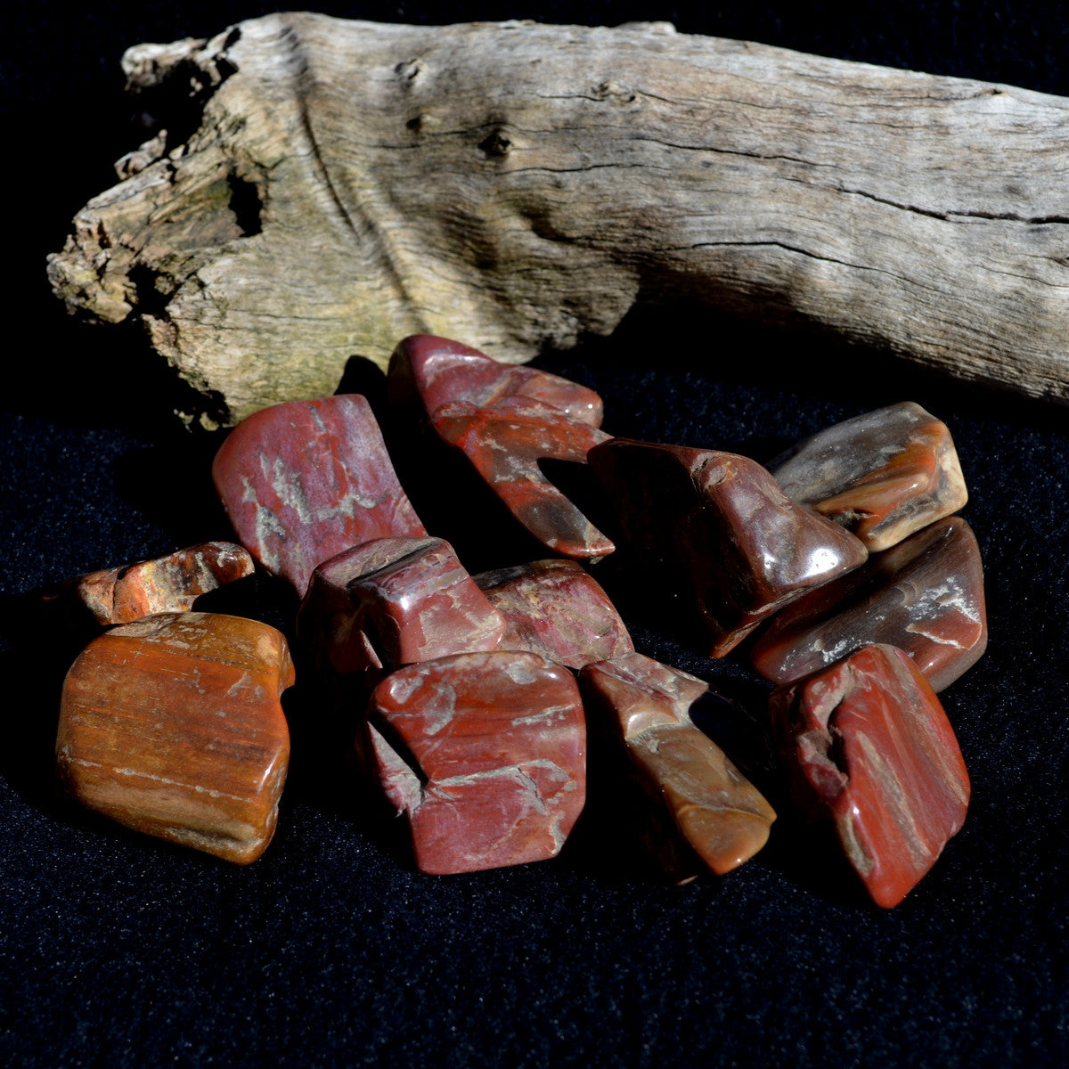 Petrified Wood Fossil Large Tumbles Madagascar - Knowledge Wisdom Grounding - Buy Now at Illiom Crystals - Now with Afterpay