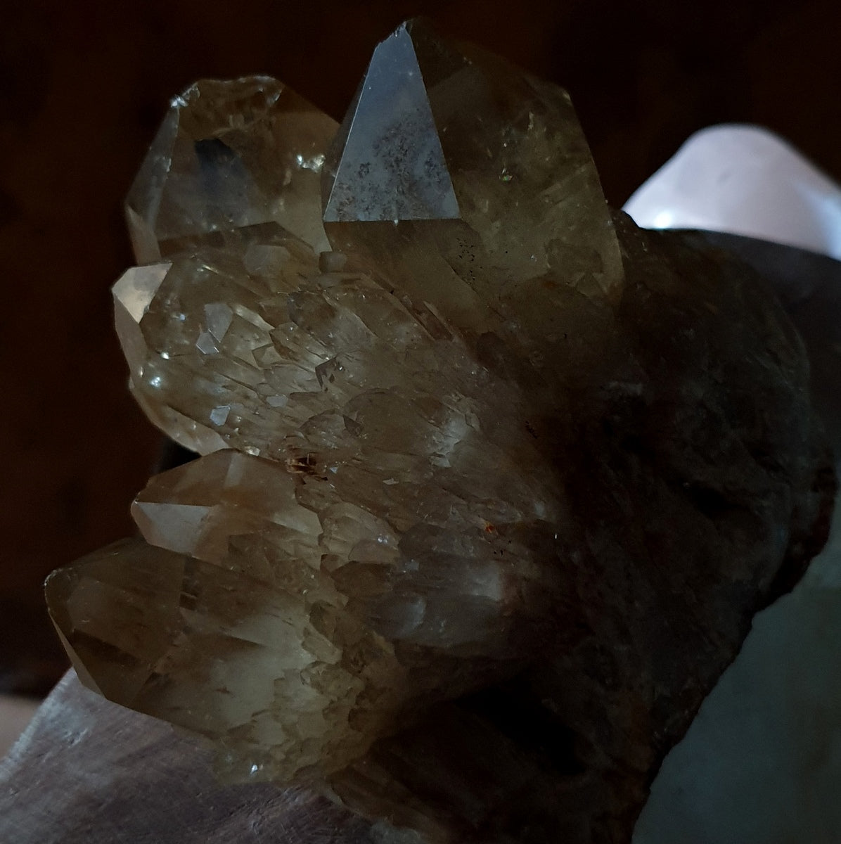 Citrine Kundalini Quartz Large Lightbrary Cluster Natural Untreated Congo - Illiom Crystals - Afterpay Available