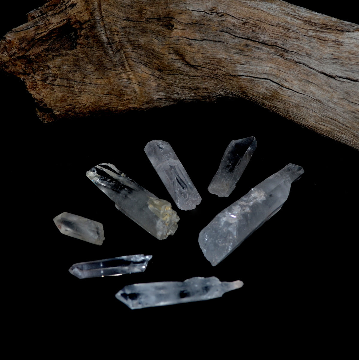 Clear Quartz Natural Warrior Crystals Points at Illiom Crystals - Afterpay Available