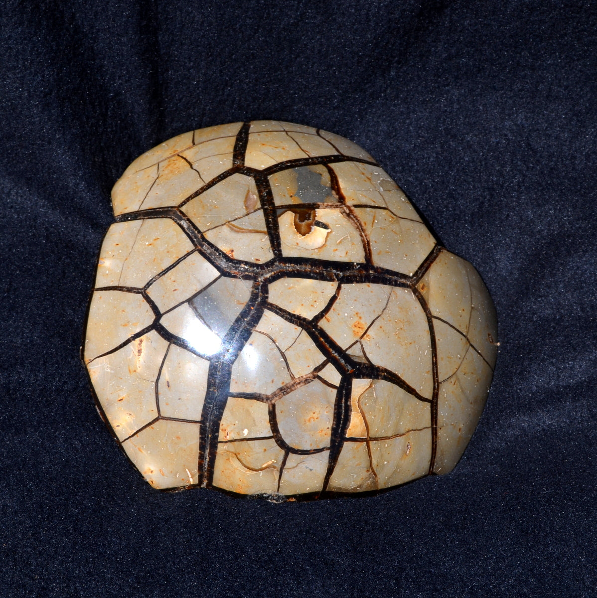 Septarian Geode Dragon Stone XXXL Drusy Sphere - Shop Now at Illiom Crystals - We have Afterpay!