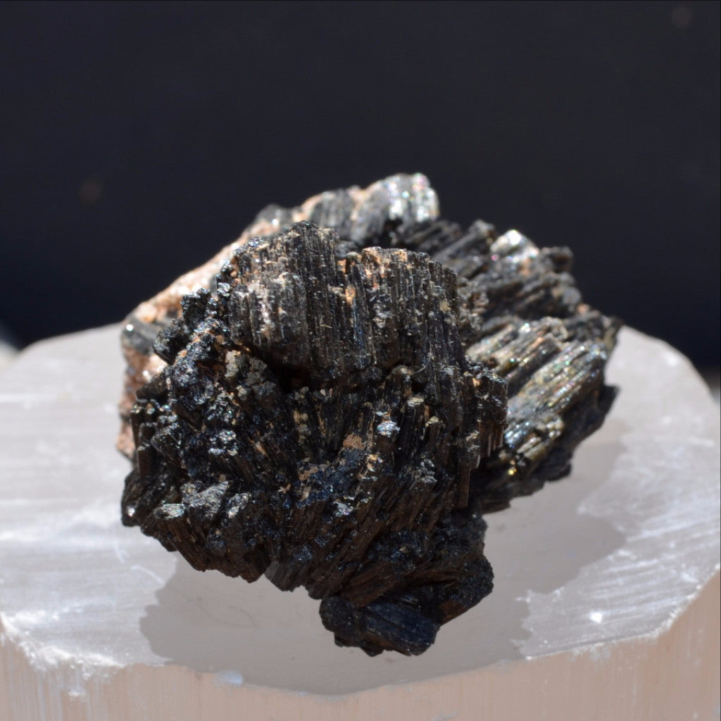 Black Tourmaline with Golden Mica (Schorl) Specimen Erongo Namibia