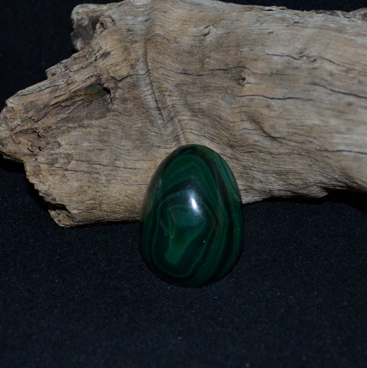 Stunning Malachite Egg - Protective Healing Truth - Shop Now at Illiom Crystals - We Have Afterpay