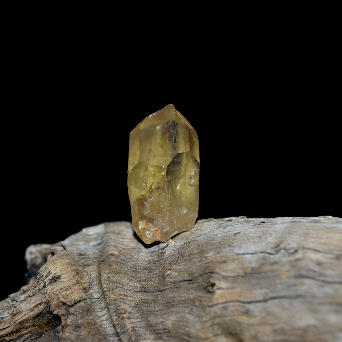Natural Untreated Citrine Point - Wealth Abundance Law of Attraction Manifestation - Shop now at Illiom Crystals - We Have Afterpay