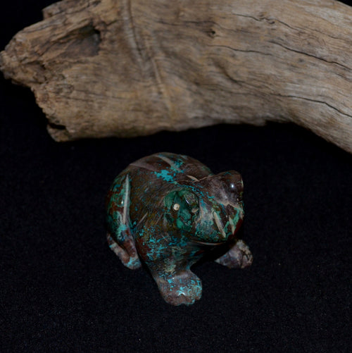 Shattuckite Cuprite Chrysocolla & Malachite Large Hand Carved Frog (T84-4-15F)