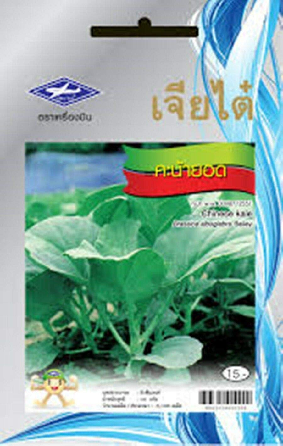 Seeds Package: 1 Pack : 2190 Seeds Kale Thai Vegetable Seeds Home Garden Health Chia Tai