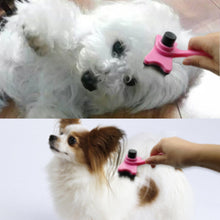 Short Hair Dogs &Cats Clean Brush Puppy Hair Fur Grooming Shedding   4 Colors - sellhotproducts
