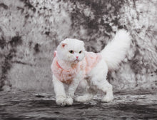 Pet Clothes Elegant Luxury Fur Winter Overcoat Small Dog Cat Clothes Bow knot Chihuahua - sellhotproducts