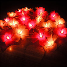 Thailand Lights Handmade Orchid Screen Flower Lantern String Holiday Christmas Fairy Garland Luminaria Wedding Decoration Lights