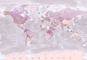 Pink World Map Mural