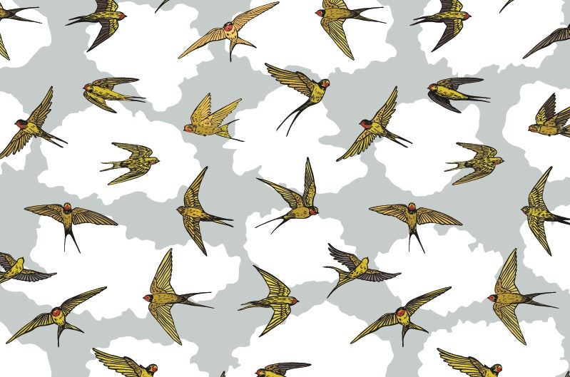 Swallows Wallpaper - Custom Order - Birds Close together