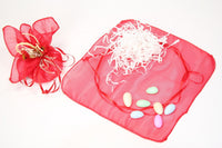 12 pcs-Organza Pouch with Satin Ribbon - Americasfavors