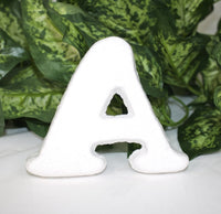 "1 pc-  3.75"" Alphabet Foam Letters (A thru Z)"