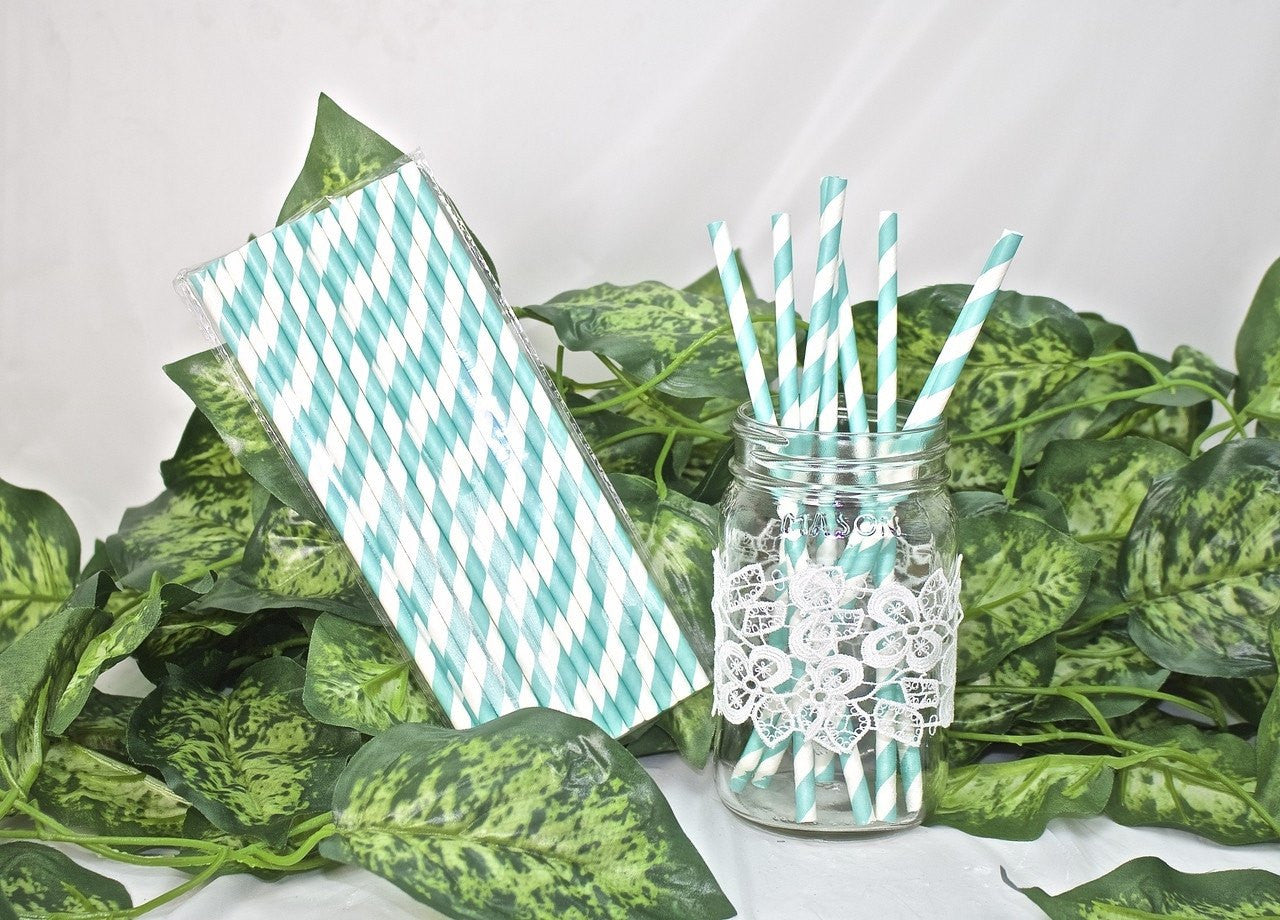 25 pcs-Paper Straws (Aqua Stripes)