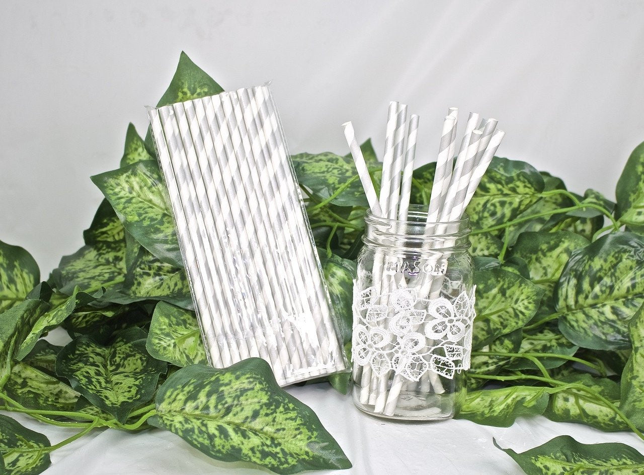 25 pcs-Paper Straws (Silver Stripes)