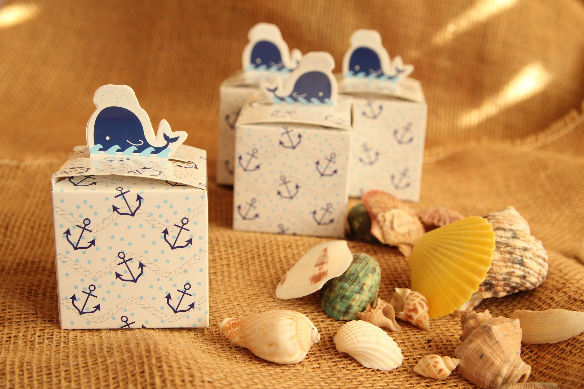 "2.5"" Nautical Whale Favor Box with Anchors (12 pieces)"