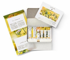 Dr Hauschka Daily Face Care Kit - Normal, Dry, Sensitive