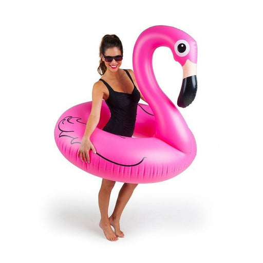 Flamingo Swim Ring | Shop Online | Snatcher
