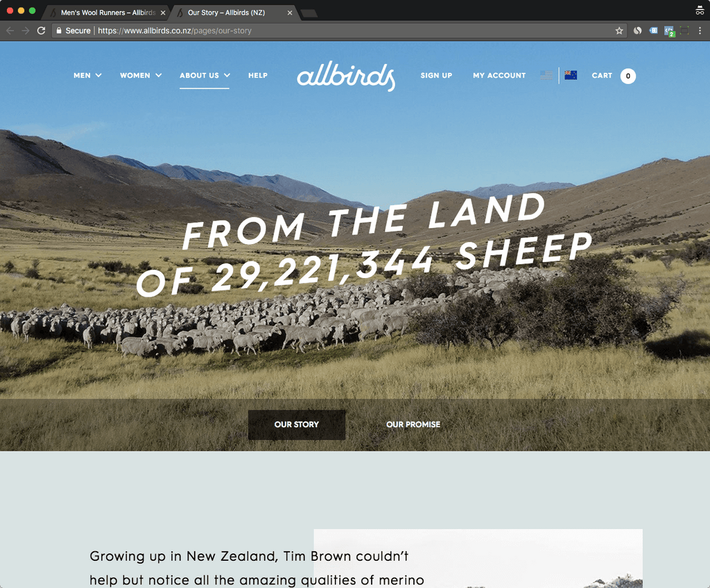 Allbirds about us page