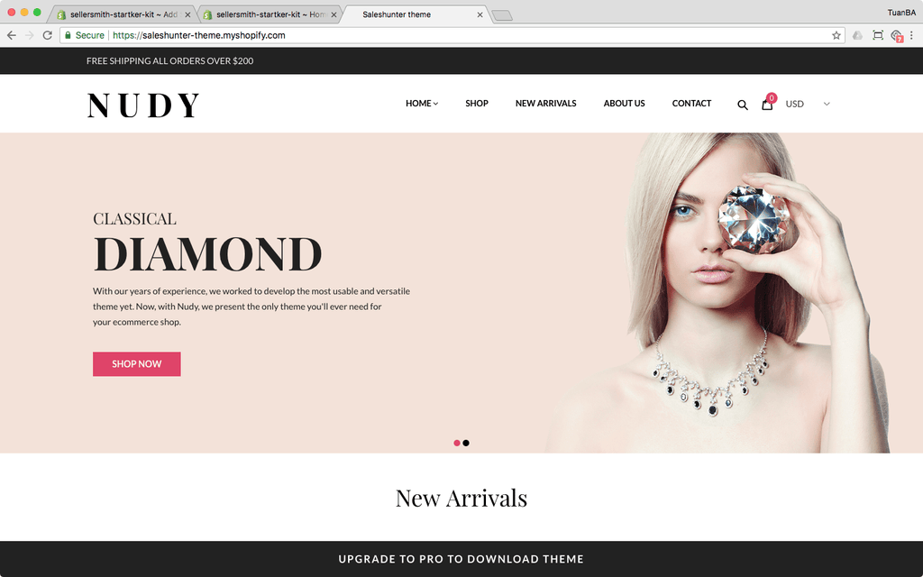 saleshunter shopify theme nudy demo