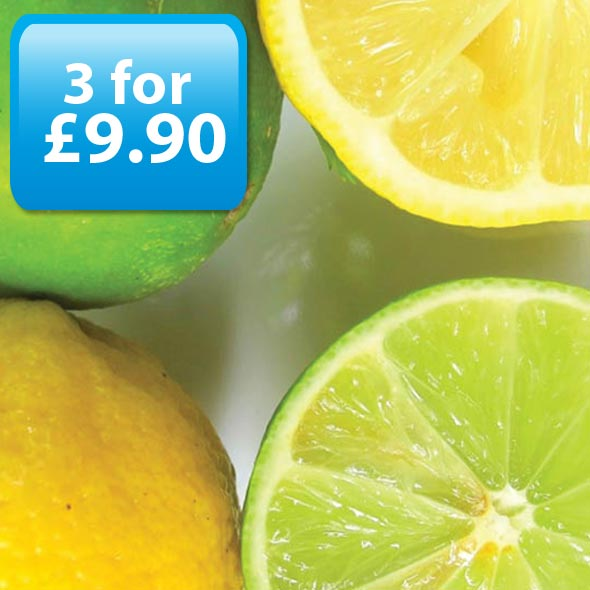Lemon & Lime E-Liquid by Best4ecigs (10ml) - Best4ecigs Vape