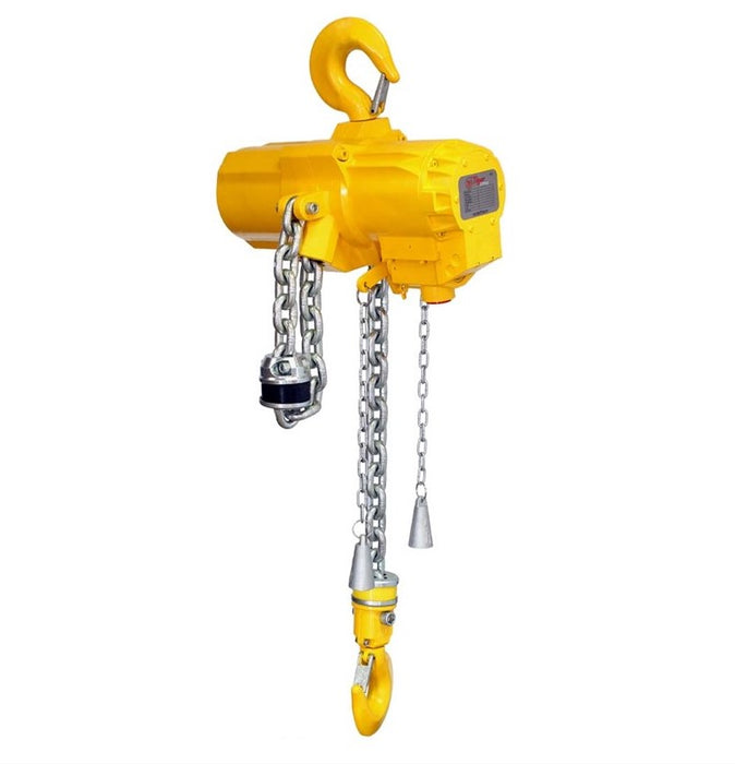 Tiger Air Hoist TAH33 3.0t with Pendant 2m Ref: 227-22 - Hoistshop