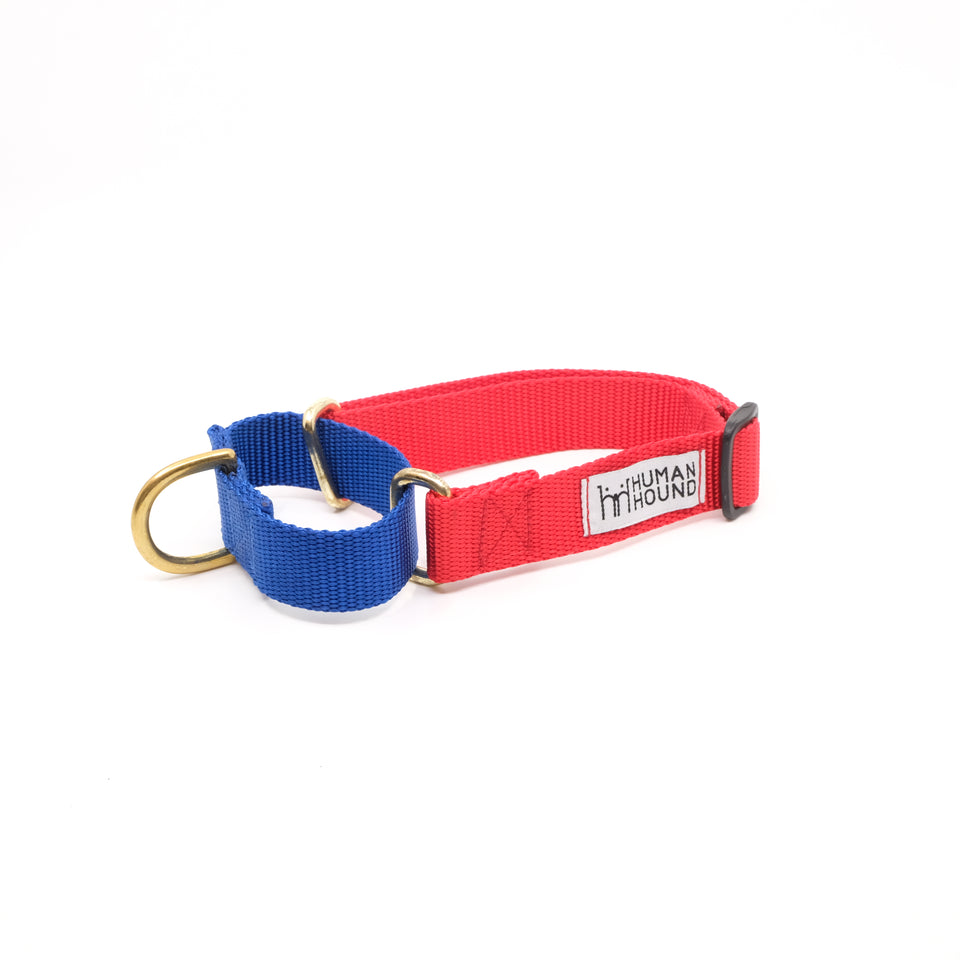 Martingale Collar - Blue x LightRed