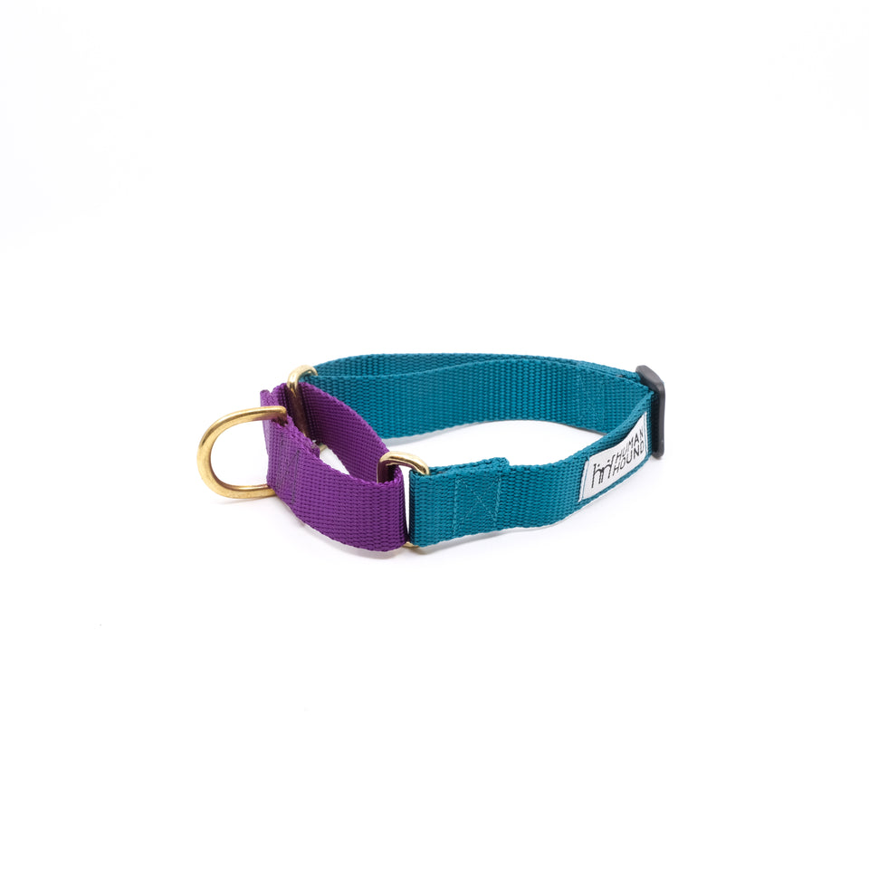 Martingale Collar - Teal x Violet