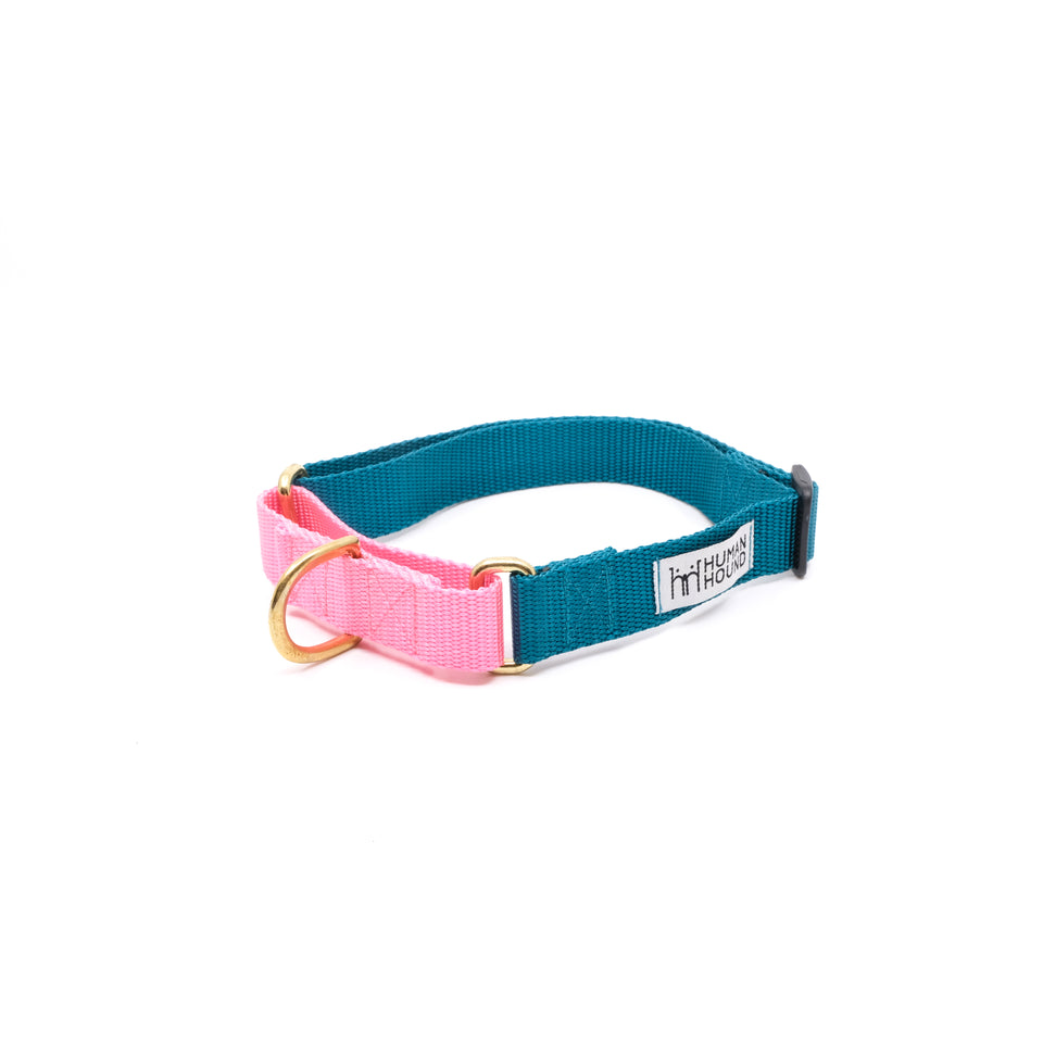 Martingale Collar - Teal x Light Pink