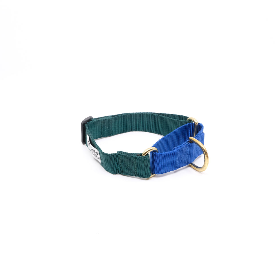 Martingale Collar - DG x Blue