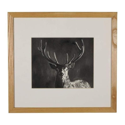 Art - William Thomas, Stag Ink Drawing