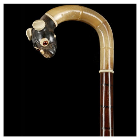 Miscellaneous - Horn Crook Handle Cane
