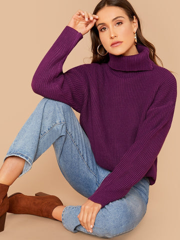 Turtle Neck Ribbed Knit Sweater