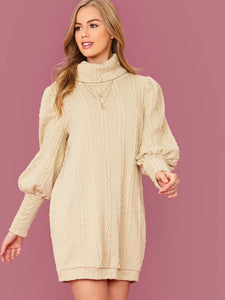 Rolled Neck Lantern Sleeve Cable Knit Dress