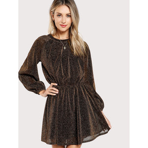 Bishop Sleeve Transparent Dress