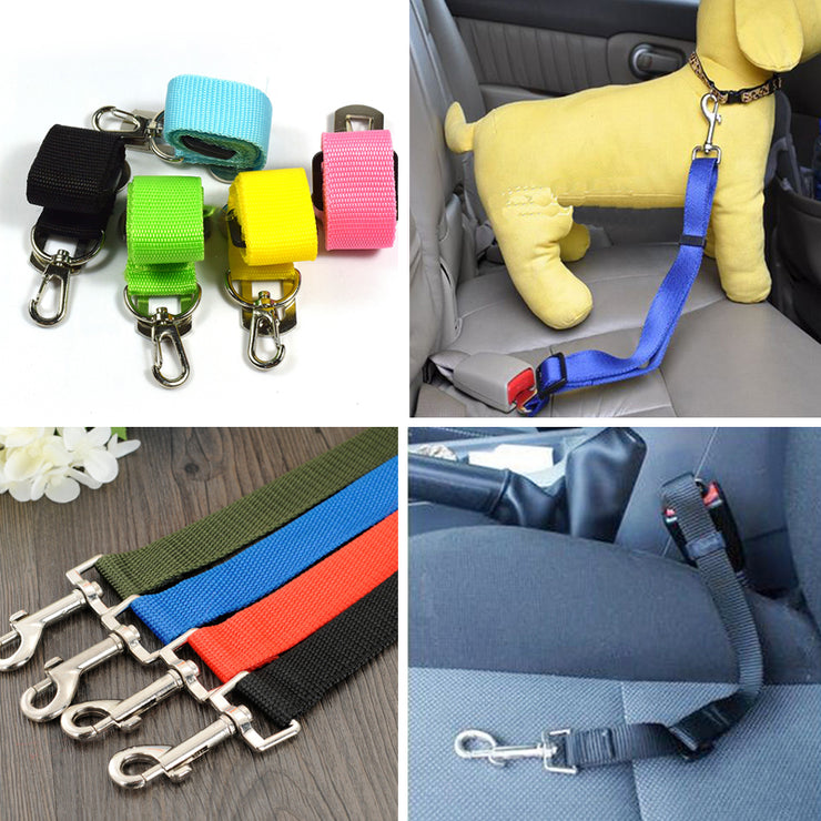 DOG COLLAR AND SEAT BELT - LANOOVA STORE