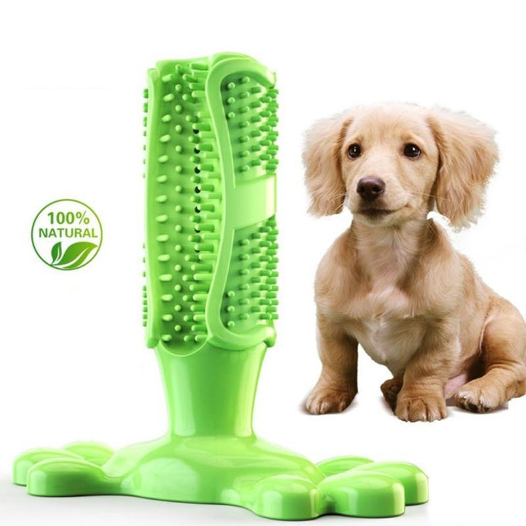 Pet Dog Toothbrush Chew Toy - LANOOVA STORE