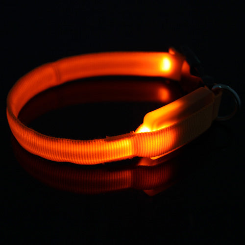 LED Nylon Safety Light-up Flashing Collar for Cats and Dogs - LANOOVA STORE