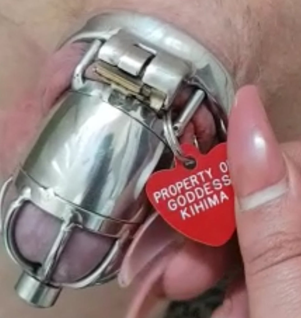 Stainless steel chastity cage with a property tag attached