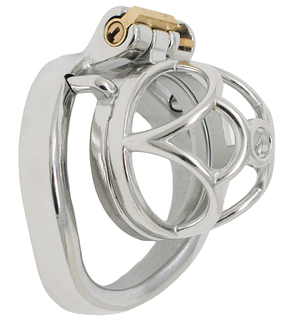 JTS S201 small chastity device with a curved ring