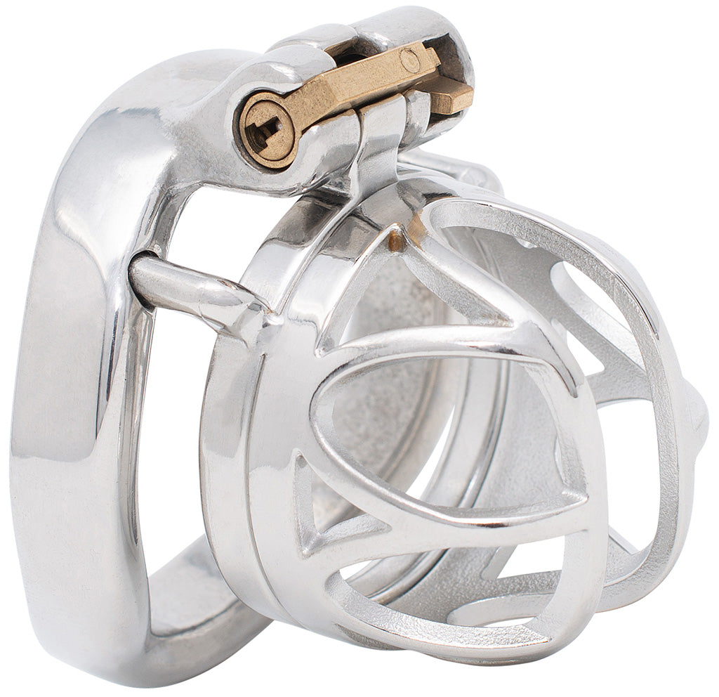 JTS S215 small chastity device with a curved ring