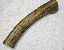 Antler Chew (various sizes)