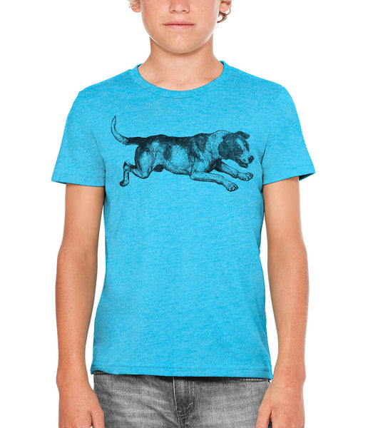 Printed In The Usa Austin Ink Apparel Playing Barking Dog Unisex Kids Vintage Printed T Shirtin Color Aqua Size Large